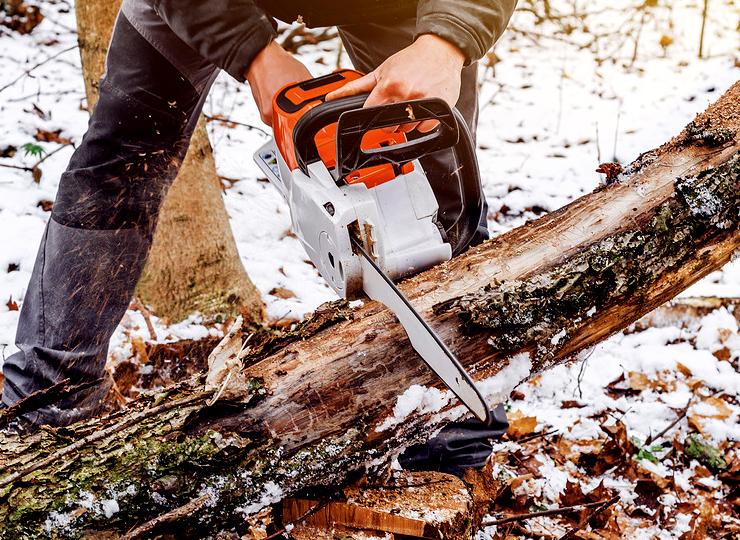 Cum tai lemnul de foc în siguranță. Cum se folosește motoferăstrăul iarna